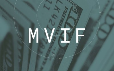 Introducing a new investment strategy: Minimum Viable Investment Framework,